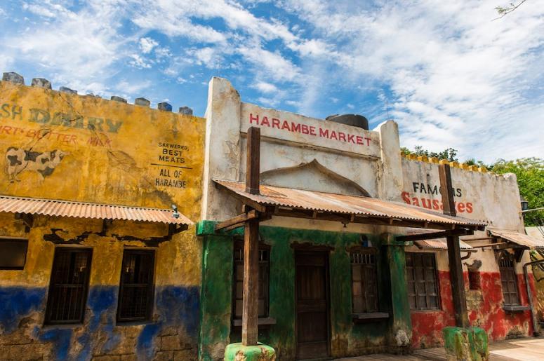 Harambe-Market-in-Africa-at-Disneys-Animal-Kingdom
